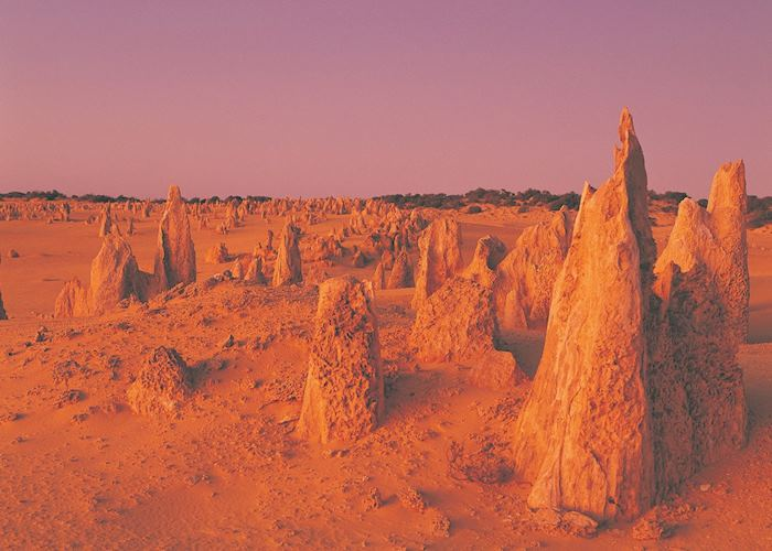 Nambung National Park & Cervantes, Western Australia