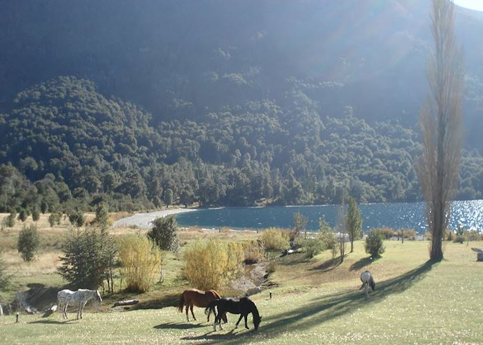 Grounds at Hosteria Peuma Hue, Bariloche