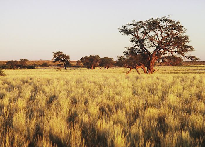 View of the surrounding area from the Kalahari Anib Lodge, Southern Namibia