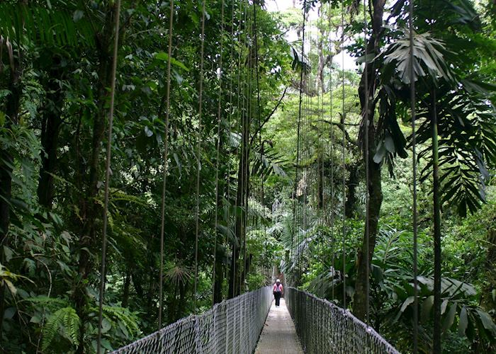 Canopy Walkway, Arenal