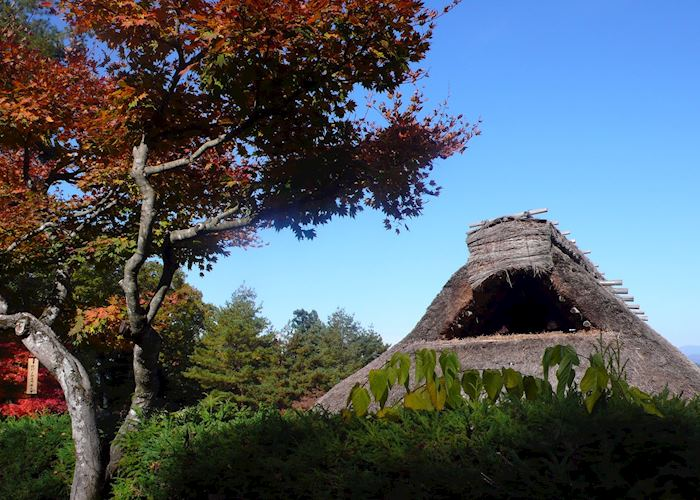 Thatched house, Hida folk village
