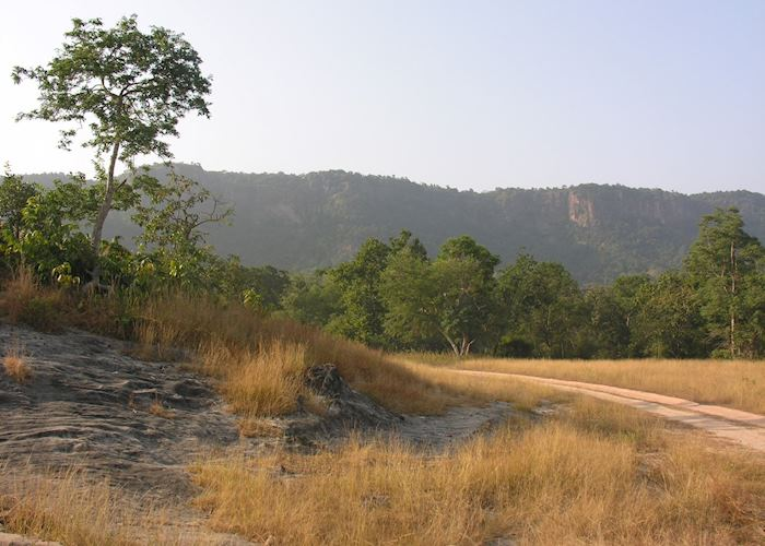 Bandhavgarh National Park, India