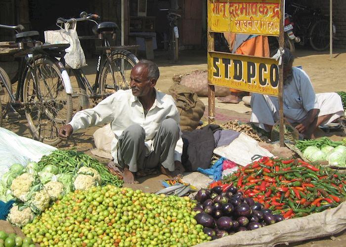 Vegetable seller, near Chambal Safari Lodge, India