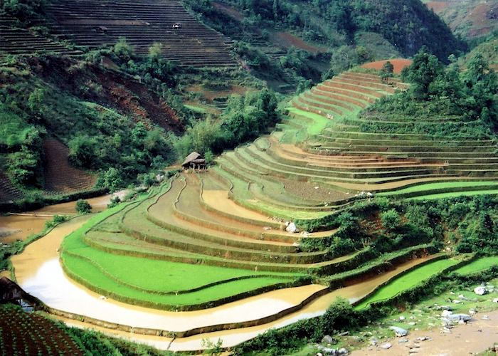 Views over the rice terraces of Sapa, Vietnam