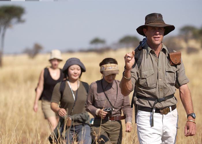 Bush Walk, Migration Camp, Serengeti National Park