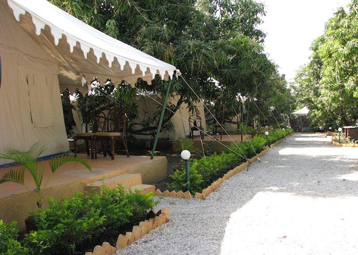 Tents at the Lion Safari Camp at the Gir National Park, Gujarat