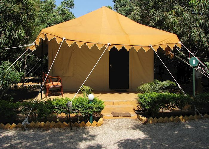 Air conditioned tents at the Lion Safari Camp