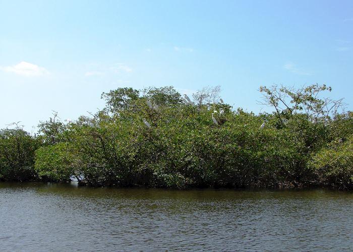 Juan Venado Island, Nicaragua