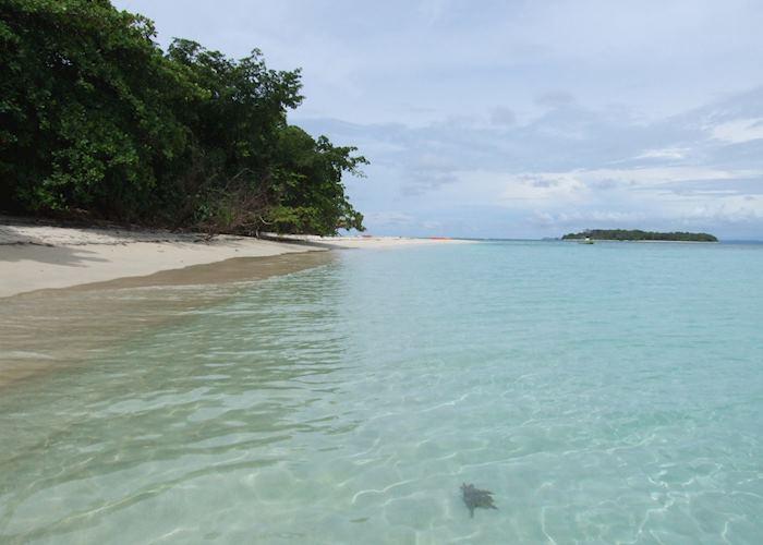 Zapatilla Cayes, Bocas del Toro