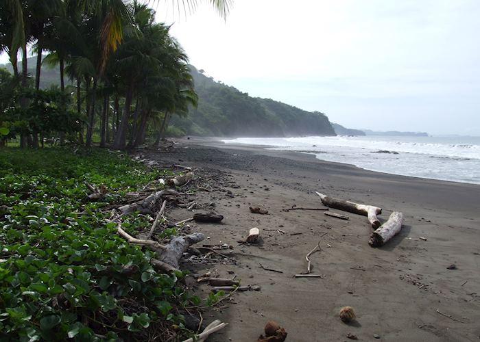 The beach at Punta Islita, Costa Rica