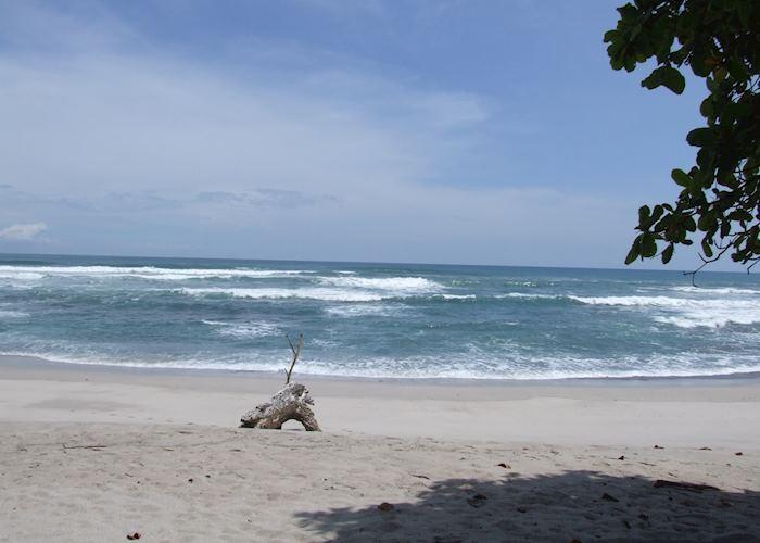 Playa Santa Teresa, Florblanca