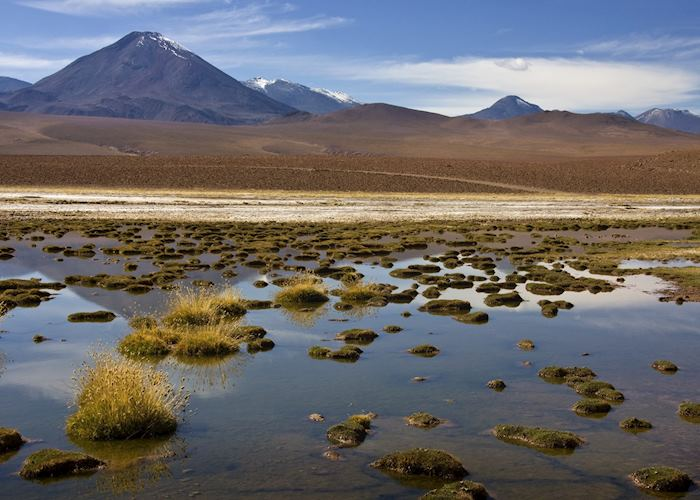 The Atacama, Chile