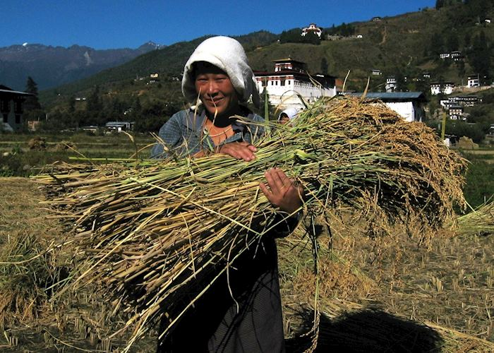 A farmer outside Paro