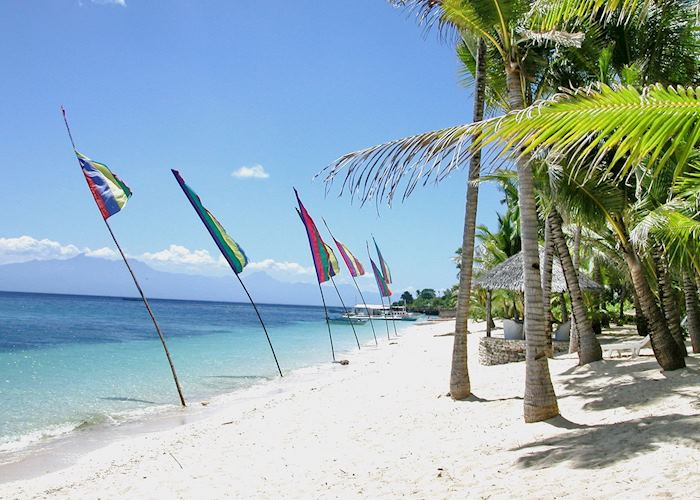 View along the beach at Coco Grove Beach Resort, Siquijor, Philippines