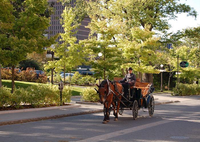 Horsedrawn Carriage Tour, Quebec City