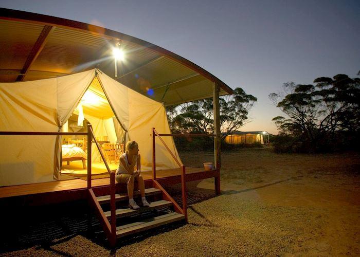 Tent, Kangaluna Camp, Gawler Ranges