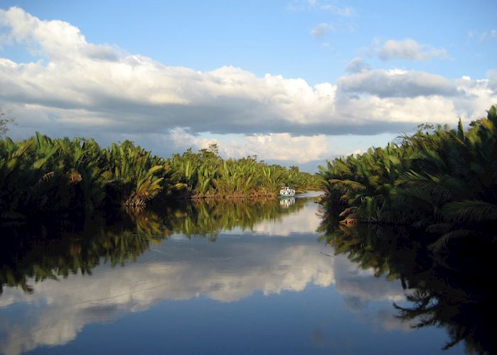 Tanjung Puting, Indonesia