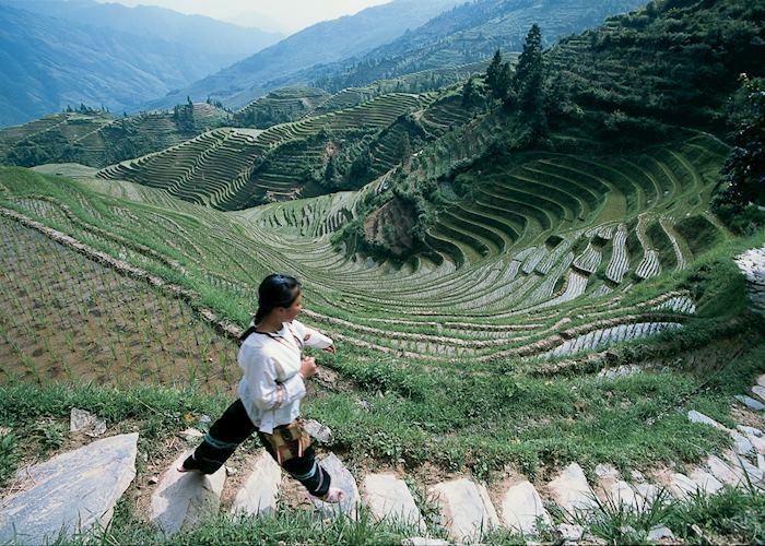 Dragon's Backbone Rice terraces, Longji