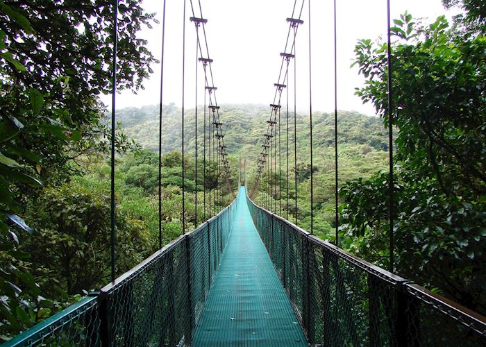 Selvatura Hanging Bridges, Monteverde