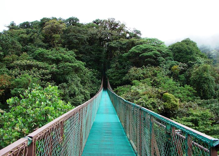 Selvatura Hanging Bridges, Monteverde