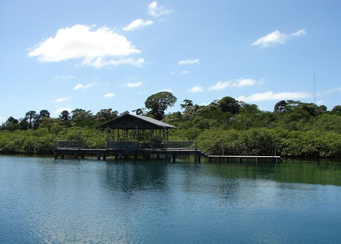 Tranquilo Bay Dock, Panama