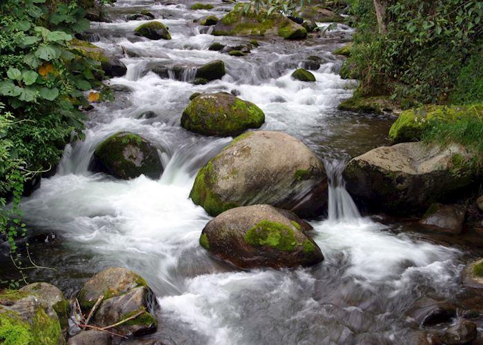 Rio Savegre, San Gerardo de Dota, Costa Rica