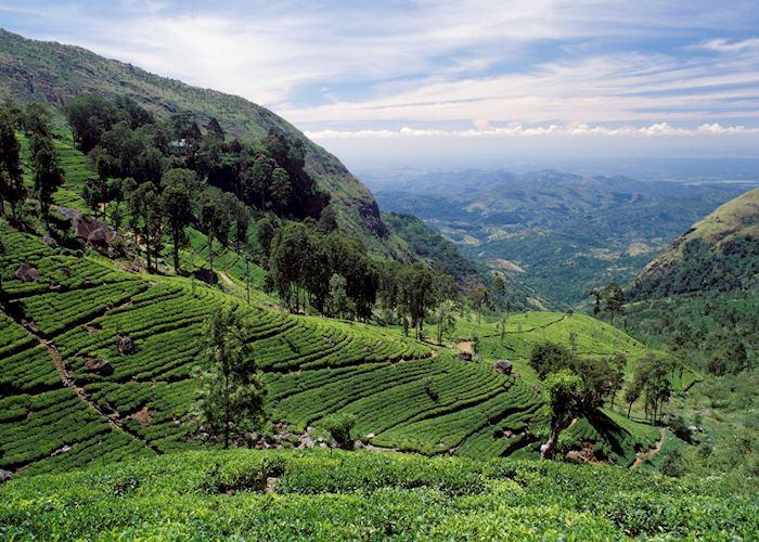 Hatton, Sri Lanka