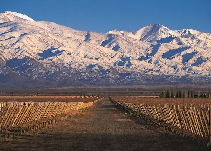 Argentina's Andes