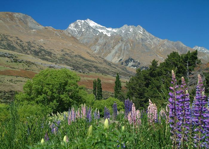 Glenorchy and the Queenstown area