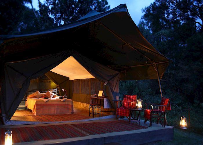 A tent at  Elephant Pepper Camp