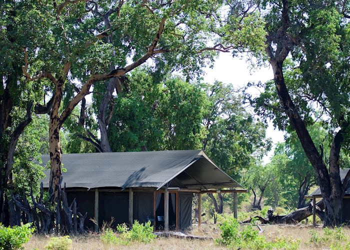Davison's Camp, Hwange National Park
