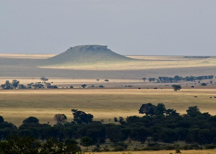 Sayari Camp, Serengeti National Park
