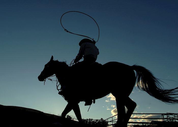 Cowboy in Calgary, Canada