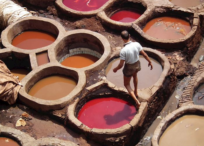 Worker at tanneries, Fez, Morocco