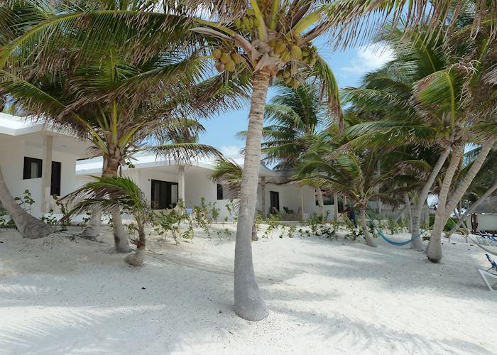 Beach front rooms, Cabanas Tulum, Tulum