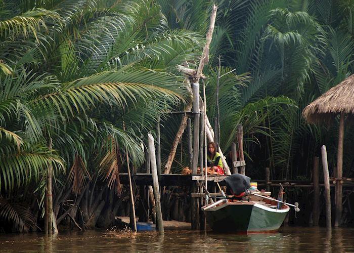 River life in Koh Kong, Cambodia