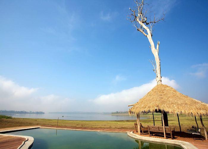 The Bison, Nagarhole National Park