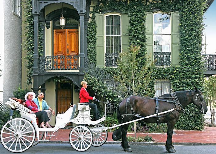 A carriage ride in Savannah