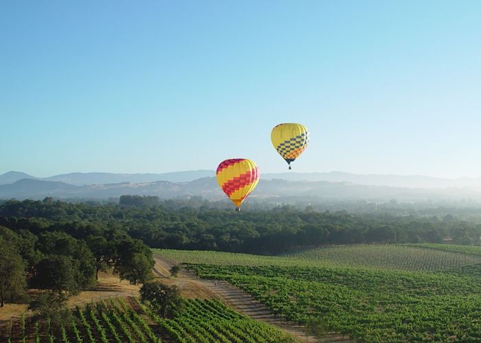Hot air ballooning in the Napa Valley