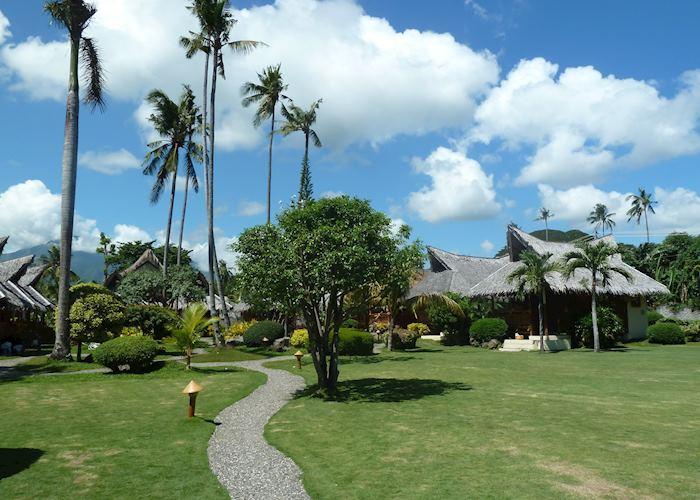 Pura Vida Beach & Dive Resort, Dauin