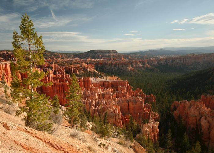 Under-the-Rim Trail, Bryce Canyon National Park