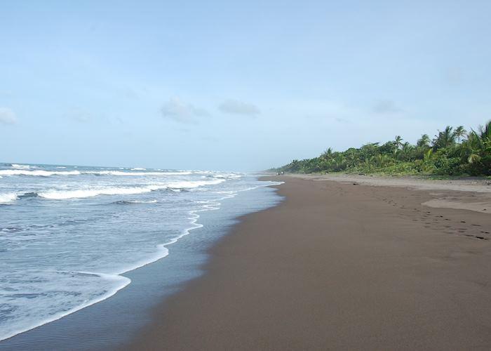 Coastline, Tortuguero National Park, Costa Rica