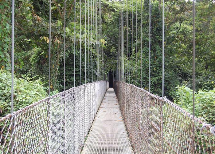 Hanging Bridges, Arenal