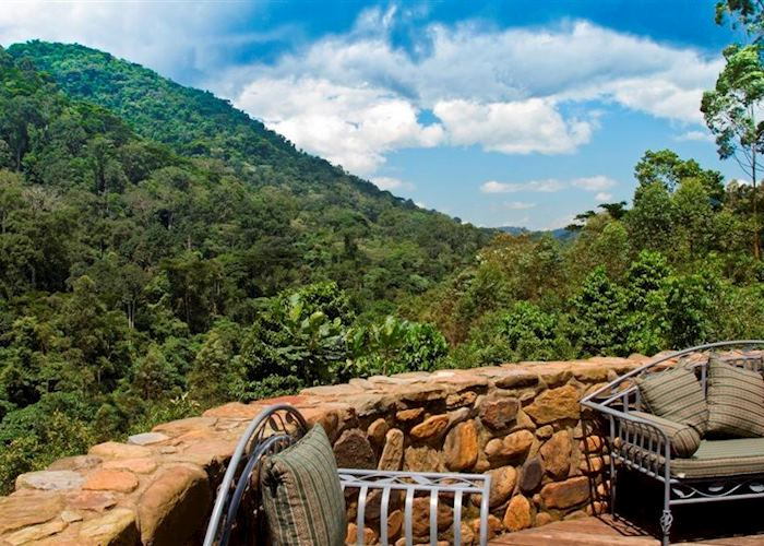Forest views from Engagi Lodge, Bwindi Impenetrable Forest