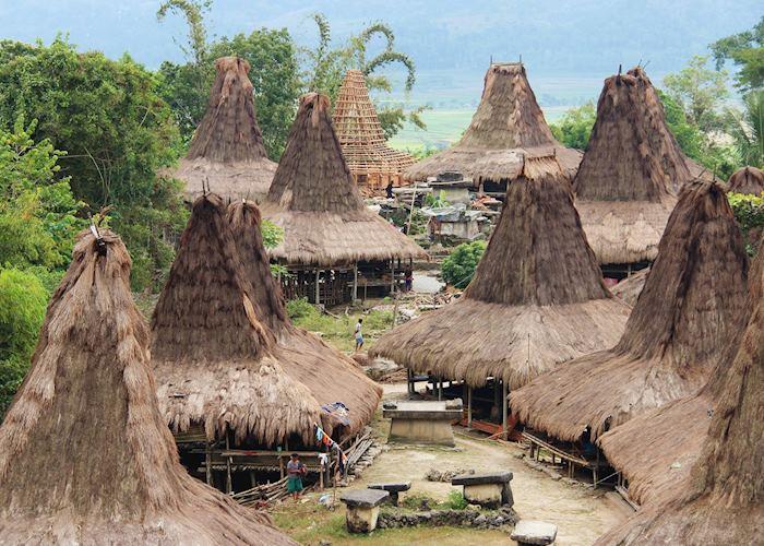 Village Scene, Western Sumba
