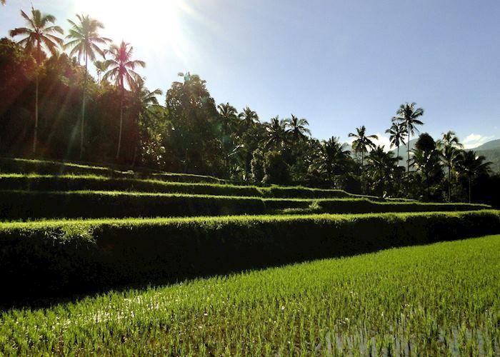 Munduk, Indonesia