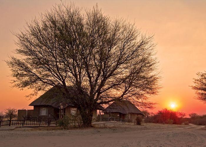 Grassland Bushman Lodge, Central Kalahari
