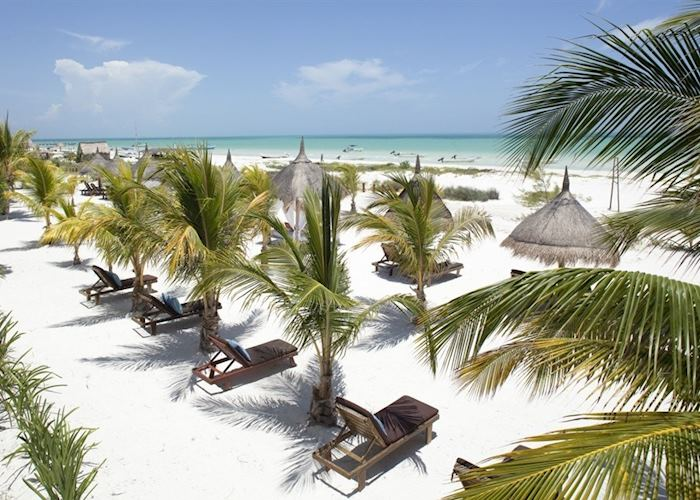 Beach at Casa Sandra, Isla Holbox