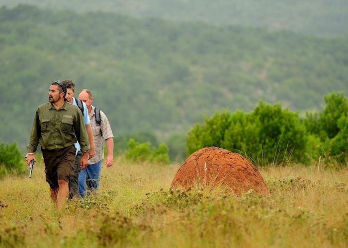 Walking from Sanbona Explorer Camp