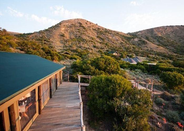Amakhala Hillsnek, Eastern Cape Game Areas